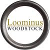 loominus logo